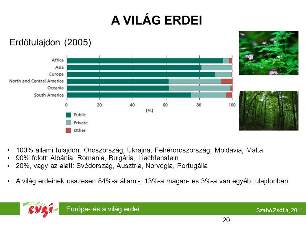 A VILÁG ERDEI Erdőtulajdon (2005)