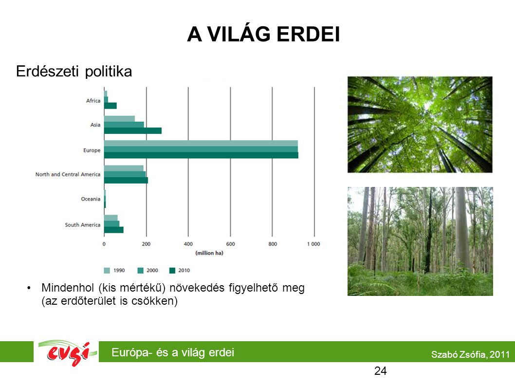 A VILÁG ERDEI Erdészeti politika