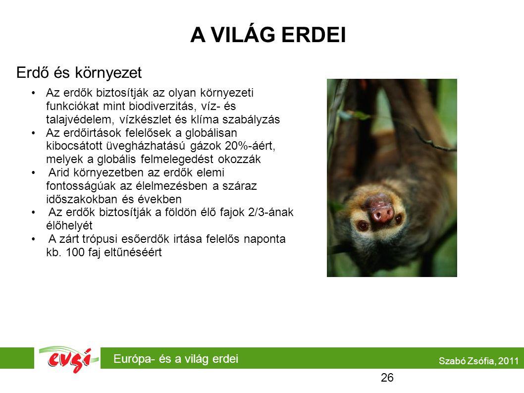 A VILÁG ERDEI Erdő és környezet