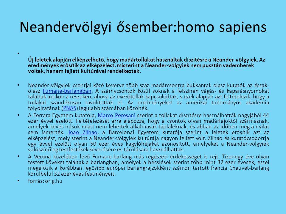Neandervölgyi ősember:homo sapiens