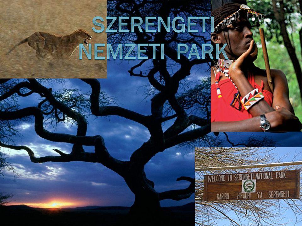 Szerengeti Nemzeti Park