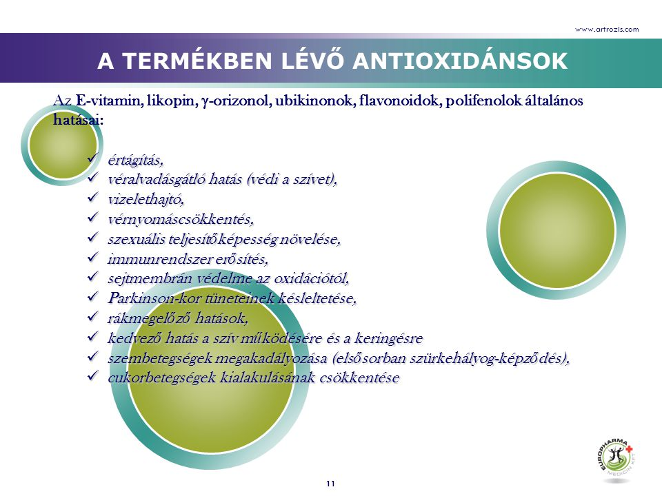 A TERMÉKBEN LÉVŐ ANTIOXIDÁNSOK