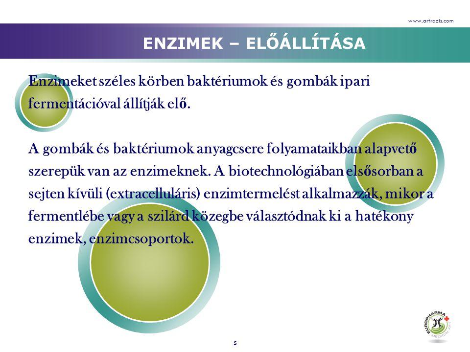 Enzimeket széles körben baktériumok és gombák ipari