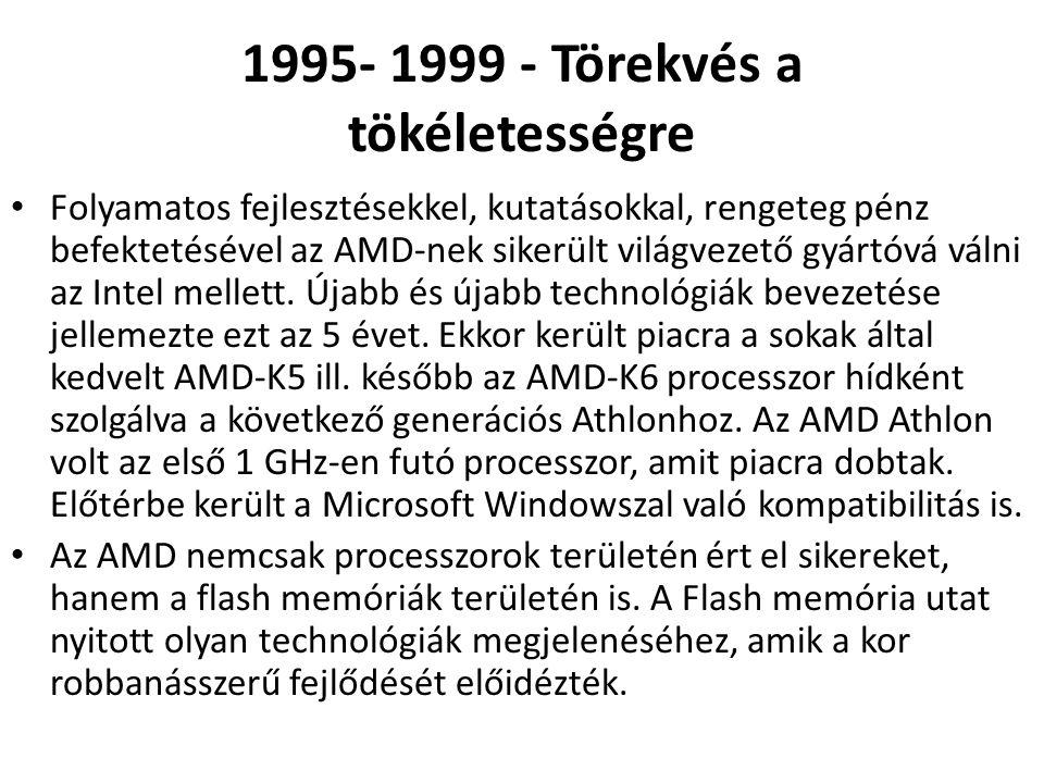 1995- 1999 - Törekvés a tökéletességre