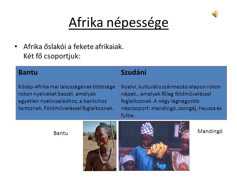 Afrika népessége Afrika őslakói a fekete afrikaiak. Két fő csoportjuk: