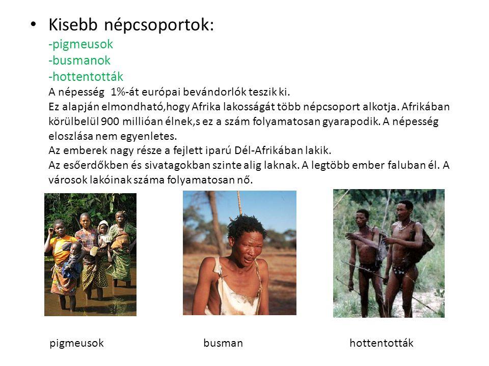 Kisebb népcsoportok: -pigmeusok -busmanok -hottentották A népesség 1%-át európai bevándorlók teszik ki. Ez alapján elmondható,hogy Afrika lakosságát több népcsoport alkotja. Afrikában körülbelül 900 millióan élnek,s ez a szám folyamatosan gyarapodik. A népesség eloszlása nem egyenletes. Az emberek nagy része a fejlett iparú Dél-Afrikában lakik. Az esőerdőkben és sivatagokban szinte alig laknak. A legtöbb ember faluban él. A városok lakóinak száma folyamatosan nő.