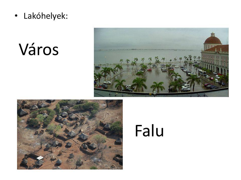Lakóhelyek: Város Falu