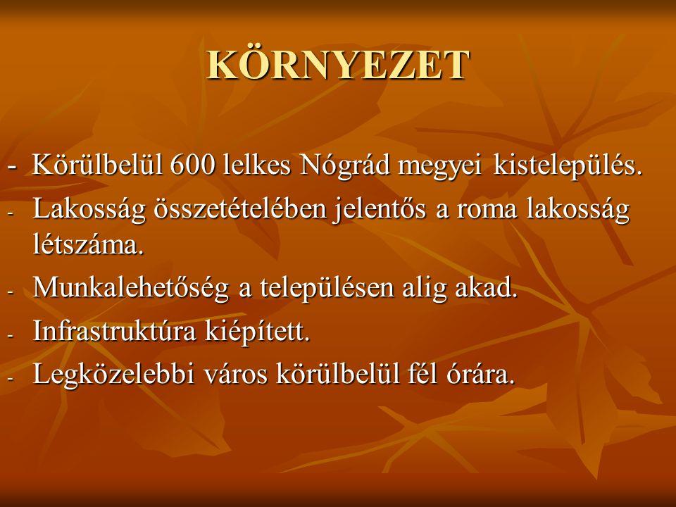 KÖRNYEZET - Körülbelül 600 lelkes Nógrád megyei kistelepülés.