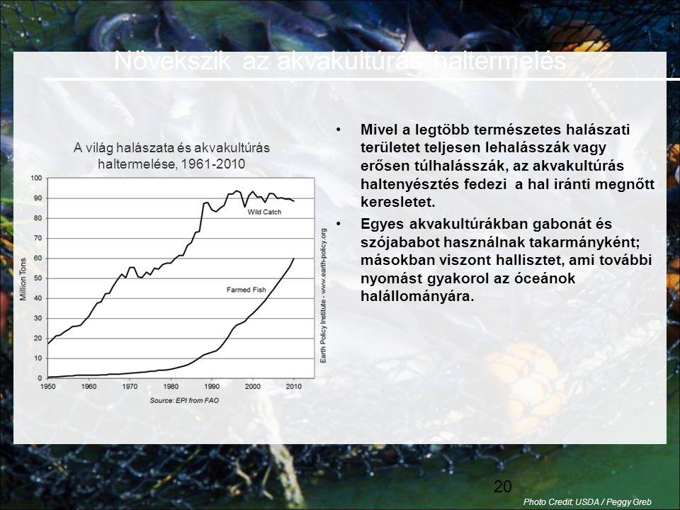 Növekszik az akvakultúrás haltermelés
