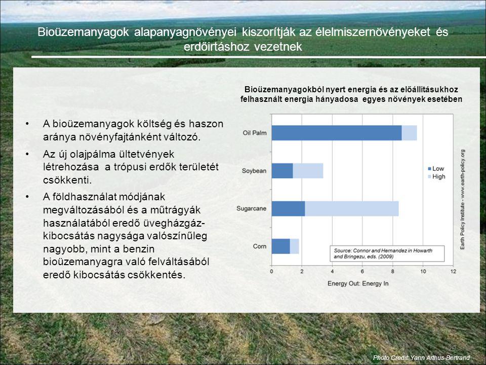 Bioüzemanyagok alapanyagnövényei kiszorítják az élelmiszernövényeket és erdőirtáshoz vezetnek