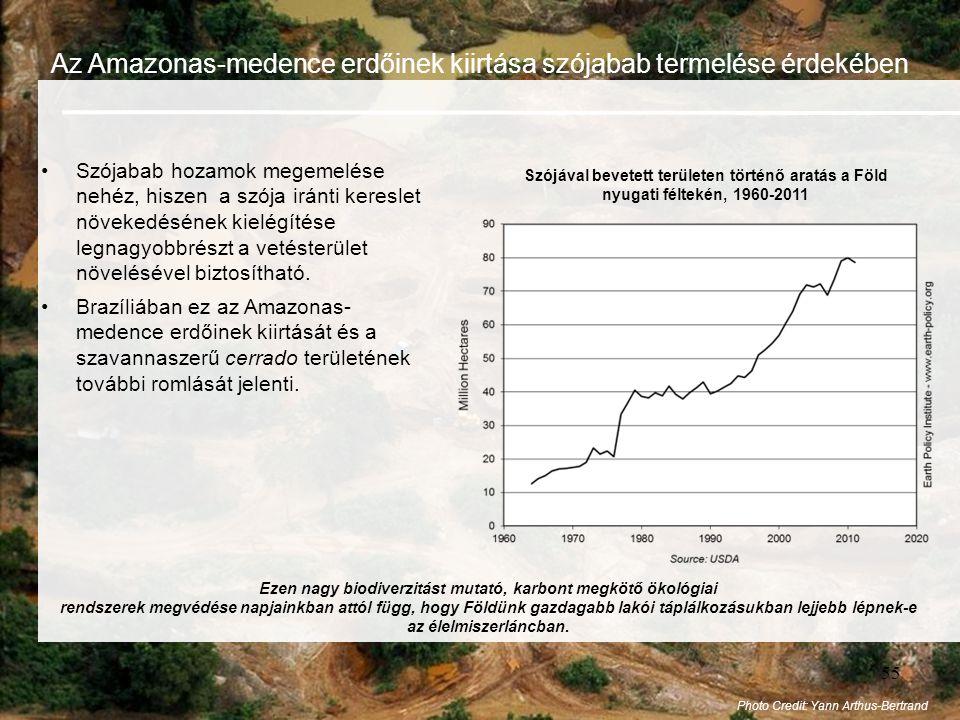 Ezen nagy biodiverzitást mutató, karbont megkötő ökológiai