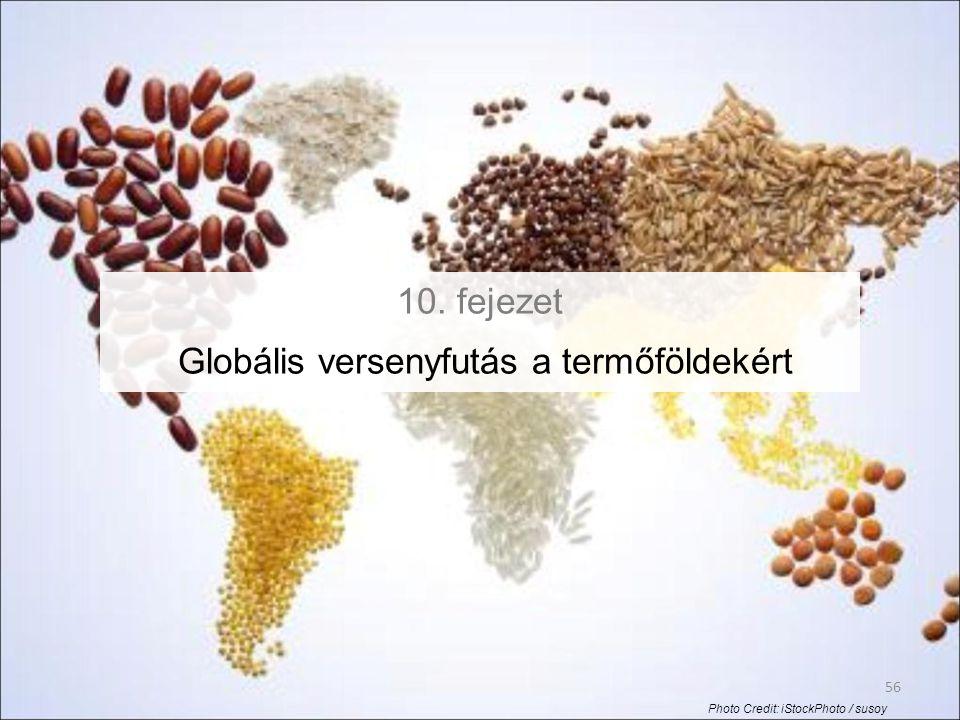 10. fejezet Globális versenyfutás a termőföldekért