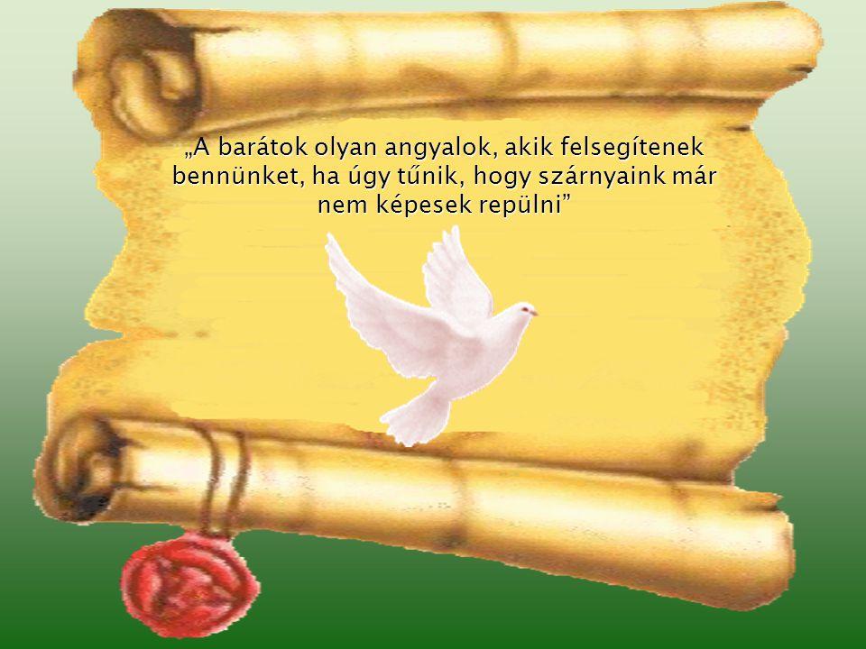 """""""A barátok olyan angyalok, akik felsegítenek bennünket, ha úgy tűnik, hogy szárnyaink már nem képesek repülni"""