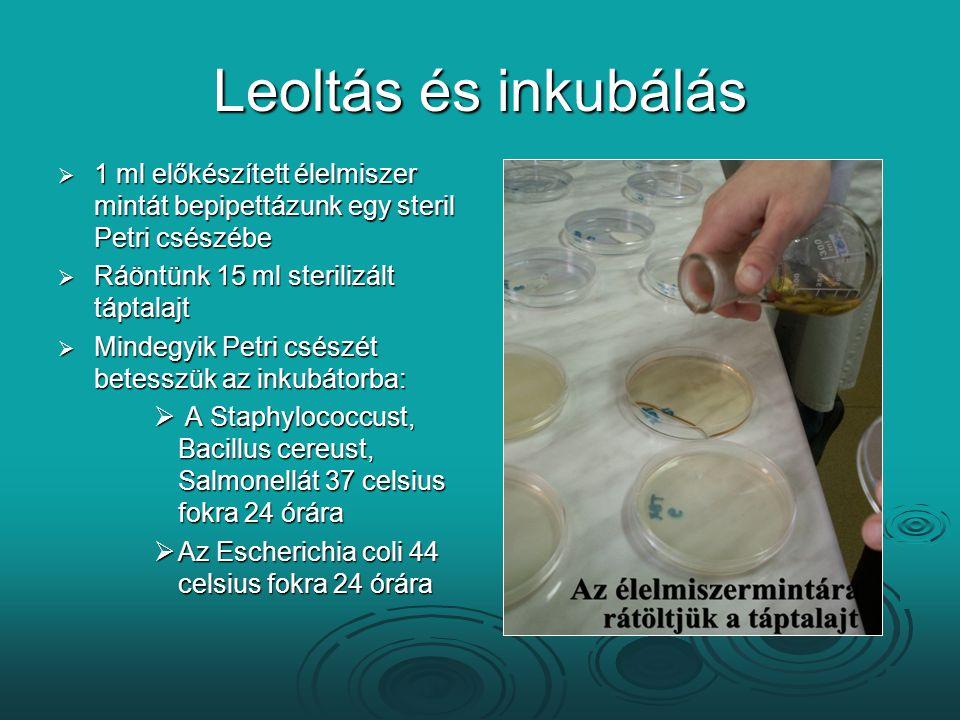 Leoltás és inkubálás 1 ml előkészített élelmiszer mintát bepipettázunk egy steril Petri csészébe. Ráöntünk 15 ml sterilizált táptalajt.