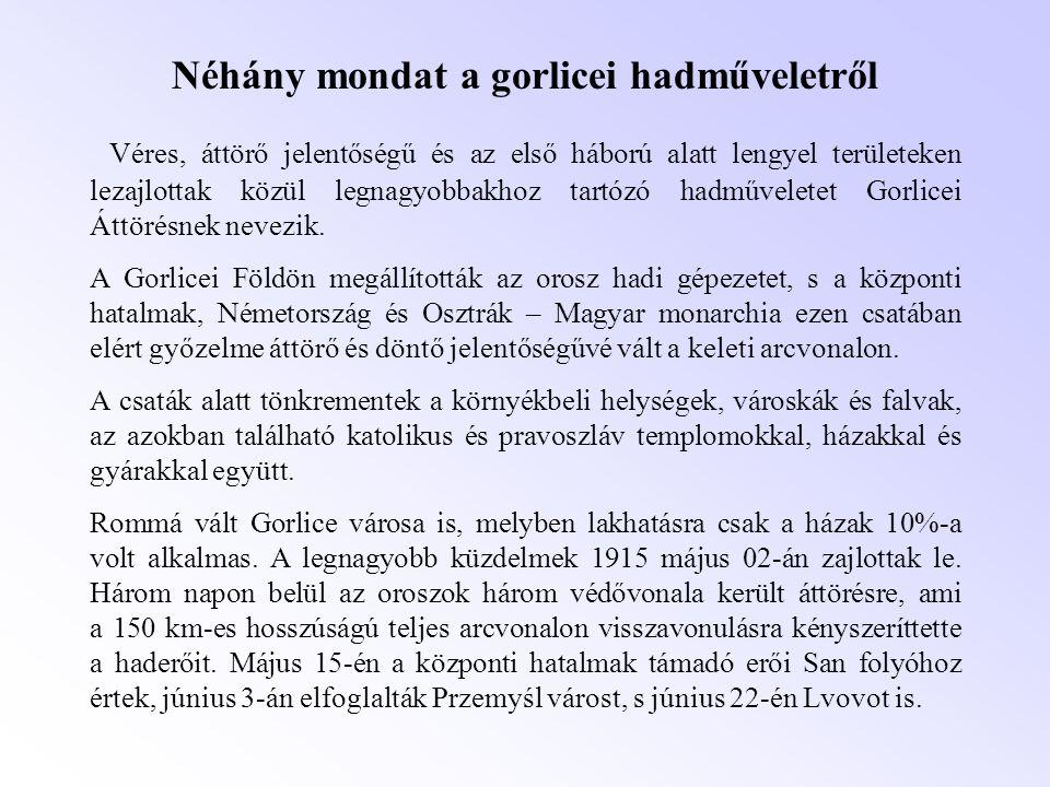 Néhány mondat a gorlicei hadműveletről