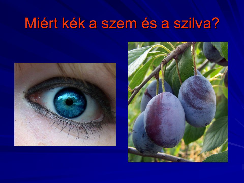 Miért kék a szem és a szilva