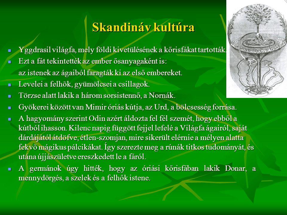 Skandináv kultúra Yggdrasil világfa, mely földi kivetülésének a kőrisfákat tartották. Ezt a fát tekintették az ember ősanyagaként is: