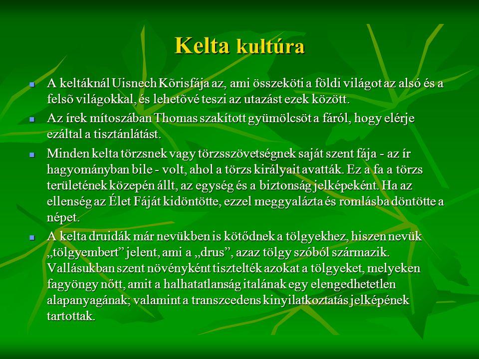 Kelta kultúra