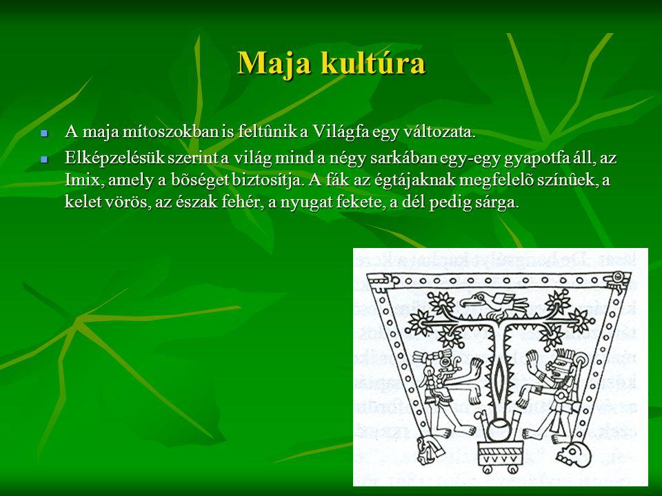 Maja kultúra A maja mítoszokban is feltûnik a Világfa egy változata.
