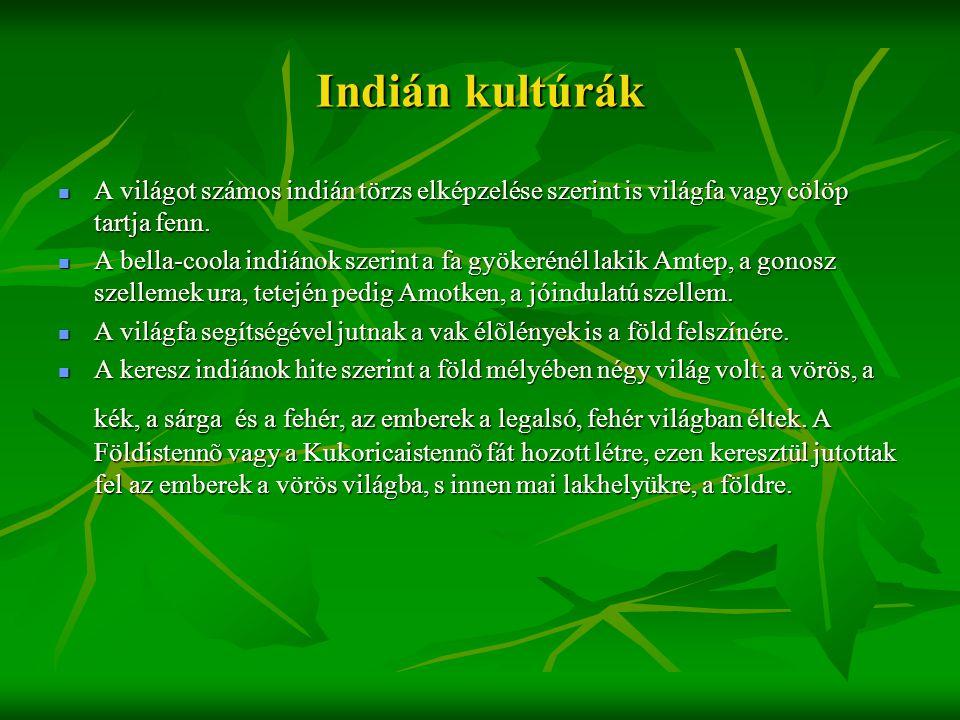 Indián kultúrák A világot számos indián törzs elképzelése szerint is világfa vagy cölöp tartja fenn.