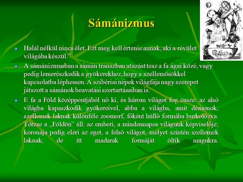 Sámánizmus Halál nélkül nincs élet. Ezt meg kell értenie annak, aki a révület világába készül.