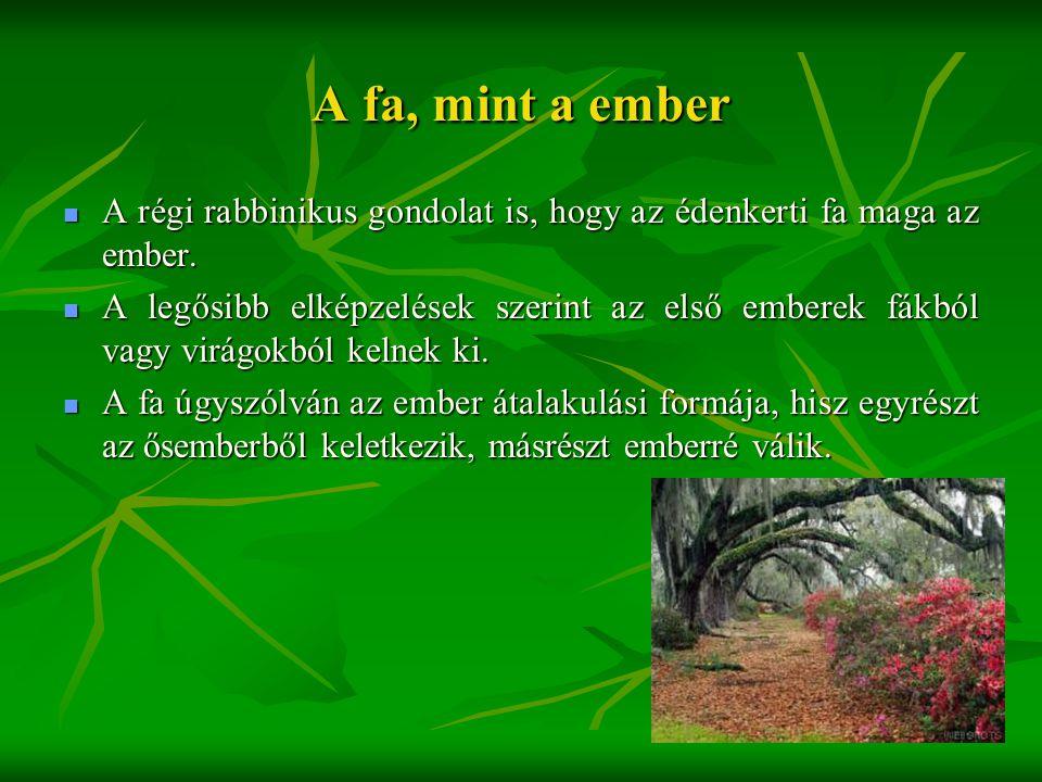 A fa, mint a ember A régi rabbinikus gondolat is, hogy az édenkerti fa maga az ember.