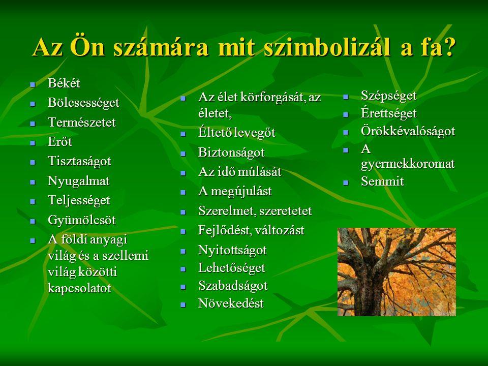Az Ön számára mit szimbolizál a fa