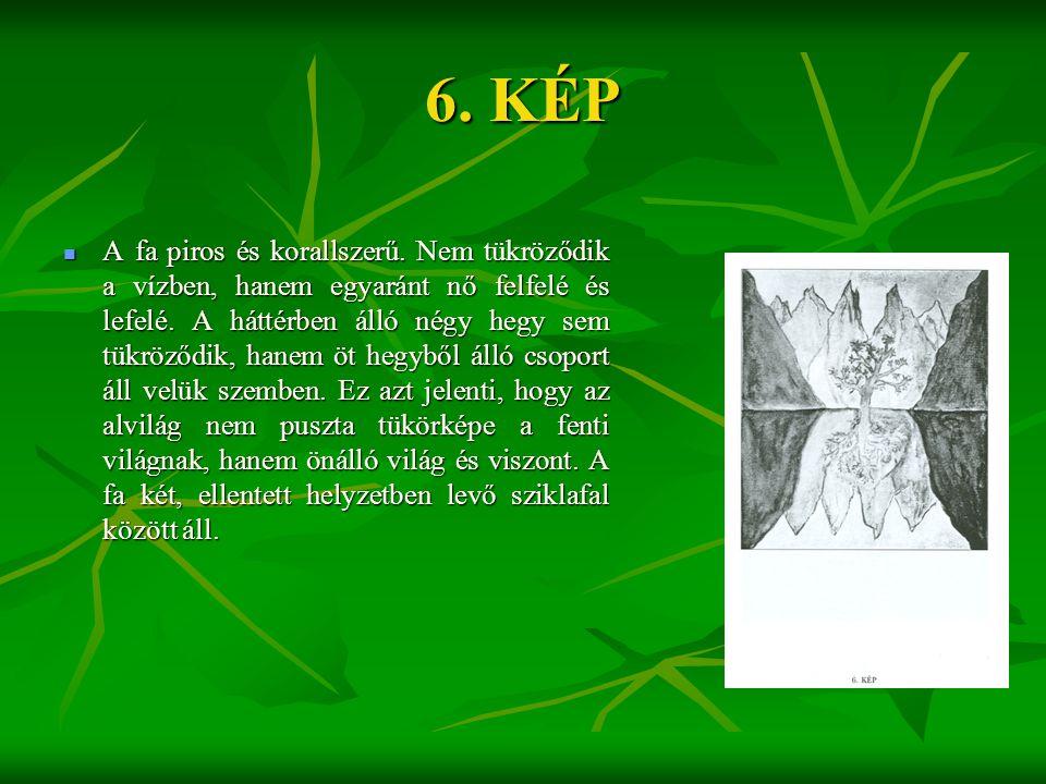 6. KÉP