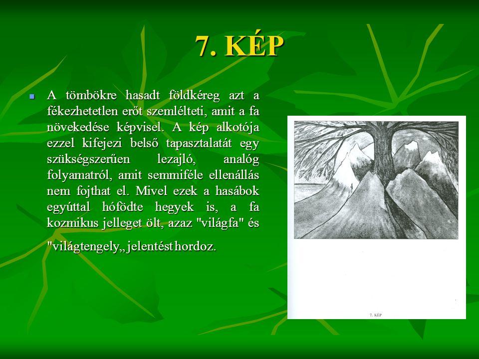 7. KÉP