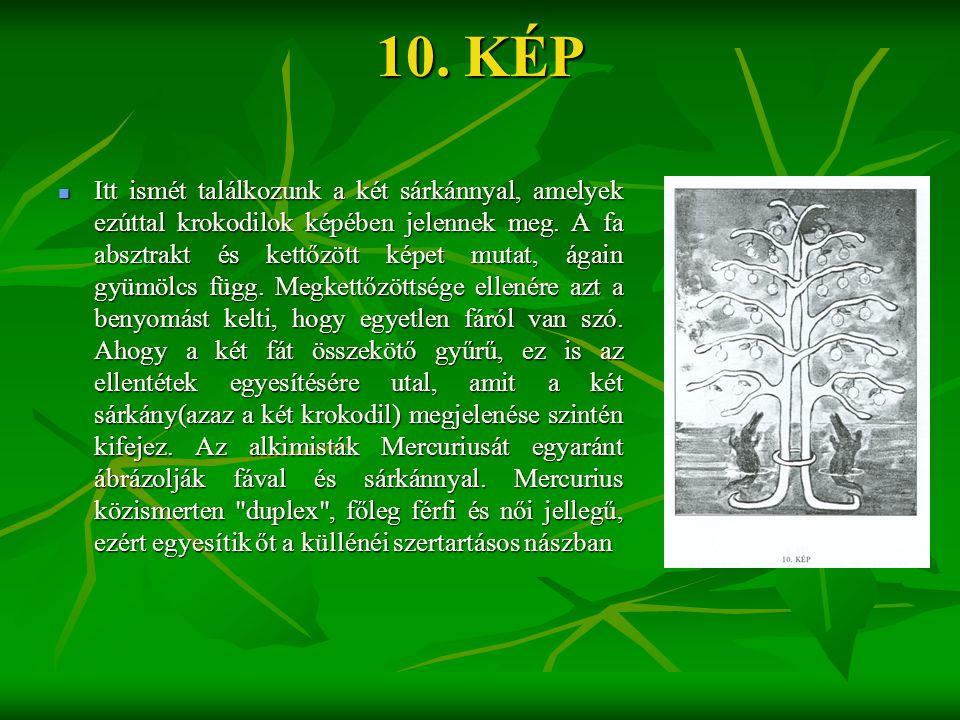 10. KÉP