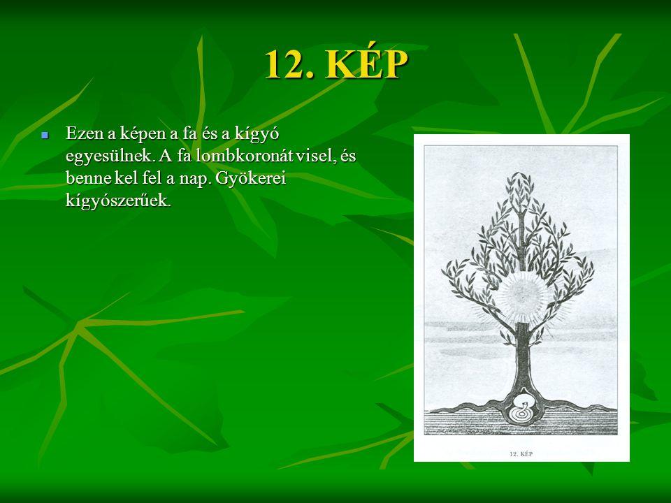 12. KÉP Ezen a képen a fa és a kígyó egyesülnek. A fa lombkoronát visel, és benne kel fel a nap.