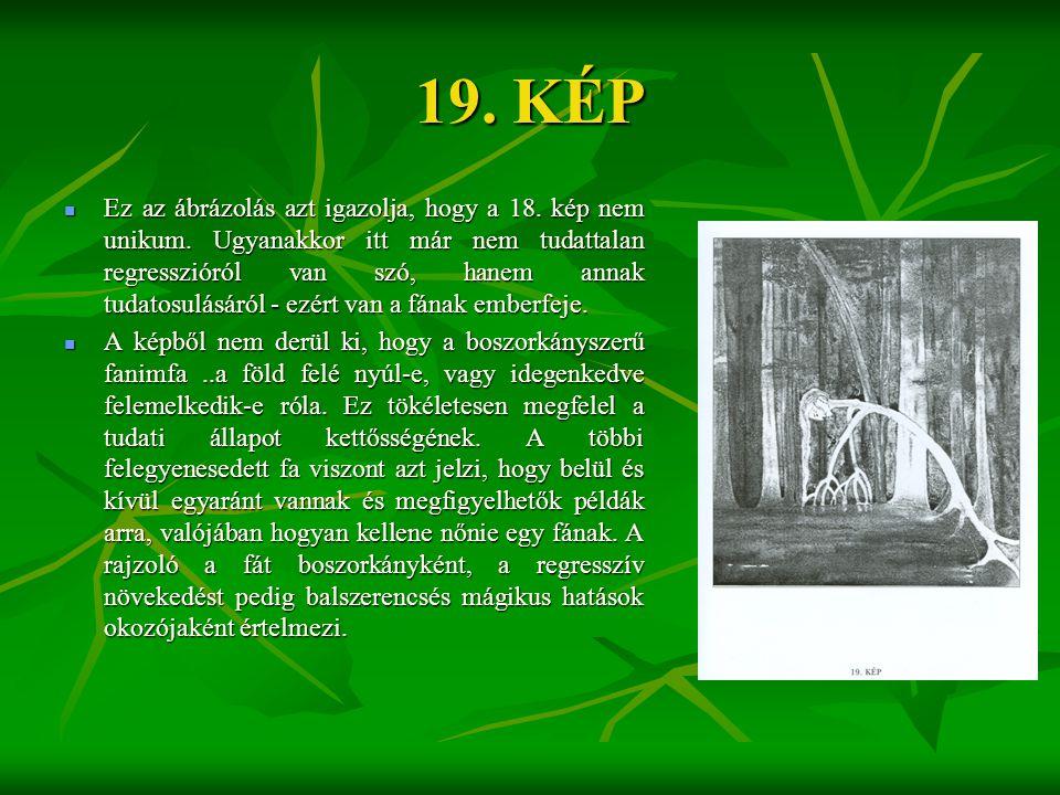 19. KÉP