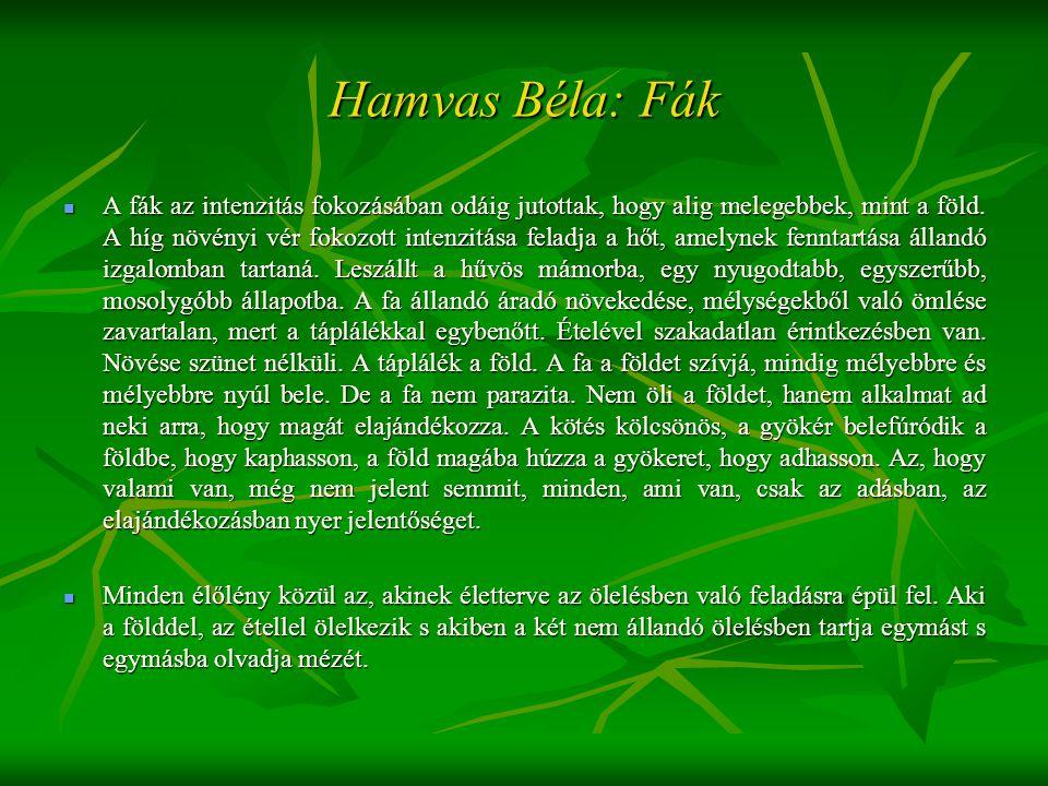 Hamvas Béla: Fák