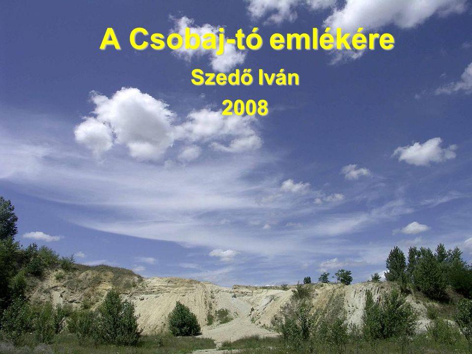 A Csobaj-tó emlékére Szedő Iván 2008