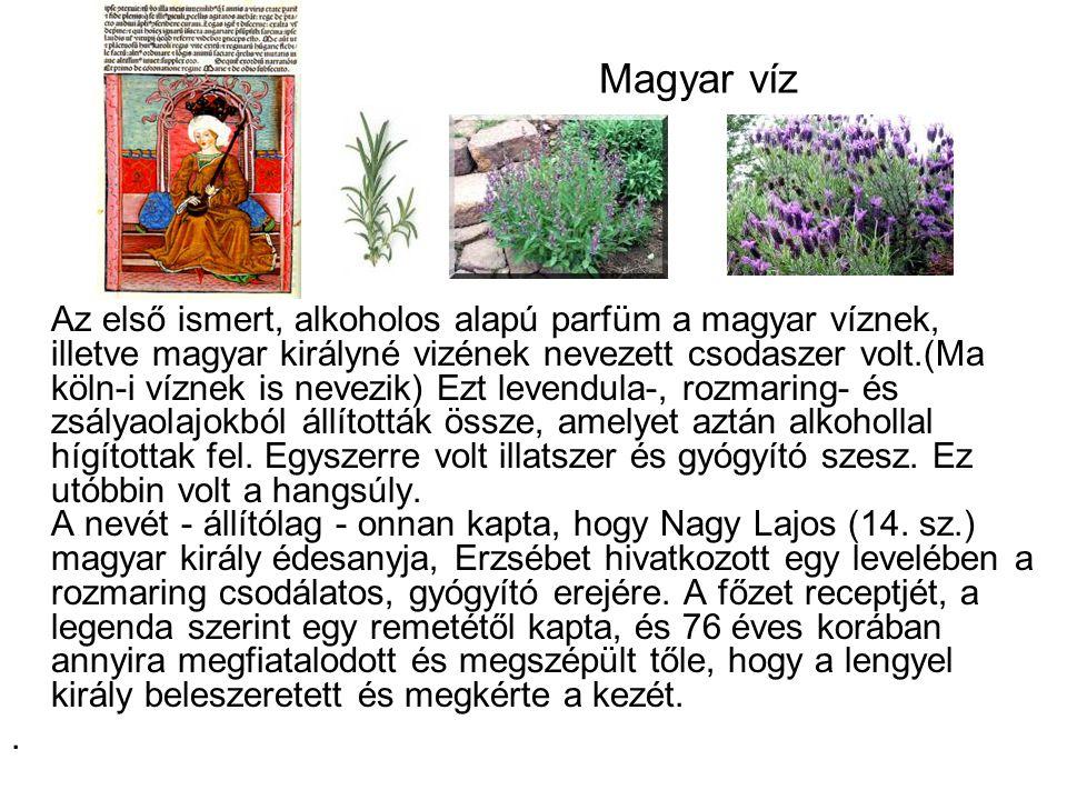 Magyar víz