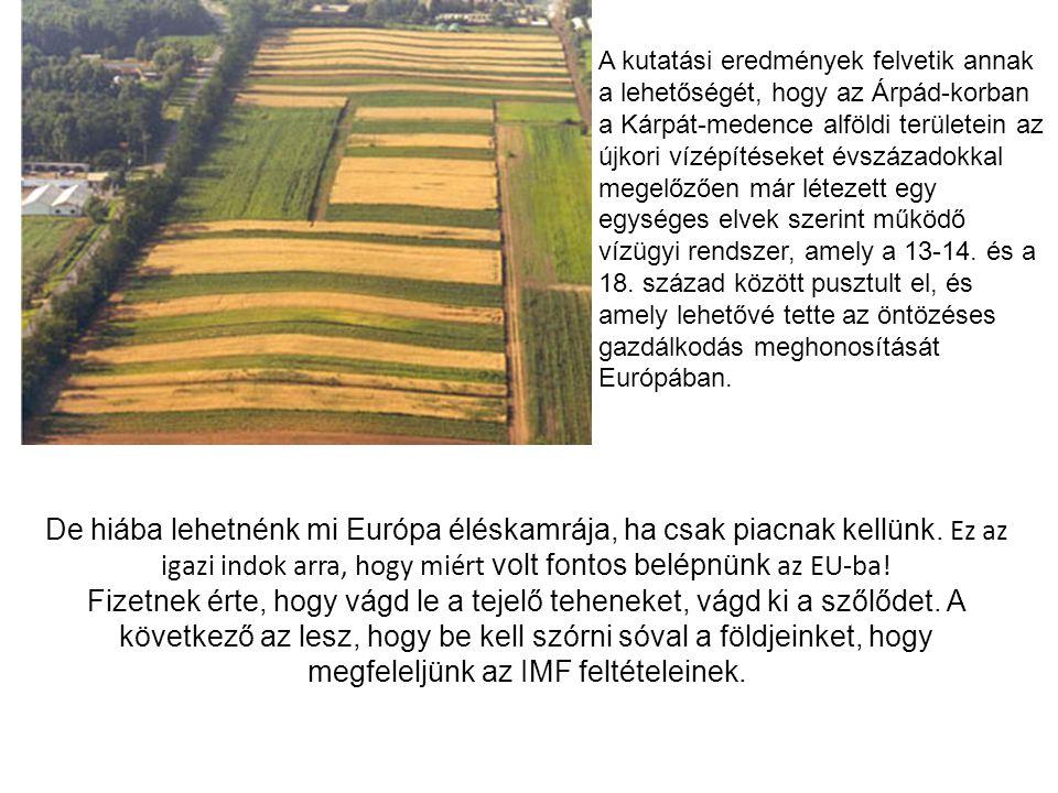 A kutatási eredmények felvetik annak a lehetőségét, hogy az Árpád-korban a Kárpát-medence alföldi területein az újkori vízépítéseket évszázadokkal megelőzően már létezett egy egységes elvek szerint működő vízügyi rendszer, amely a 13-14. és a 18. század között pusztult el, és amely lehetővé tette az öntözéses gazdálkodás meghonosítását Európában.
