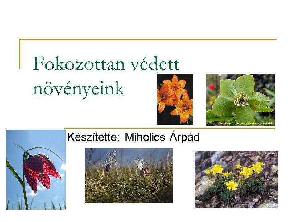 Fokozottan védett növényeink