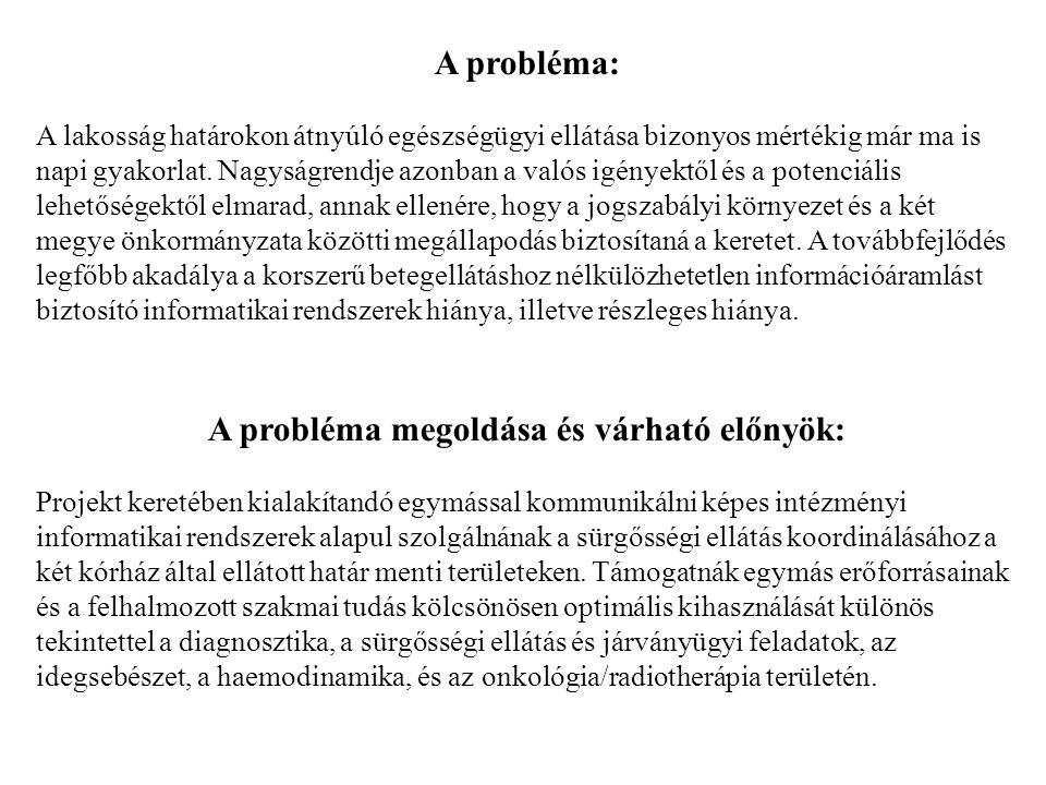 A probléma megoldása és várható előnyök:
