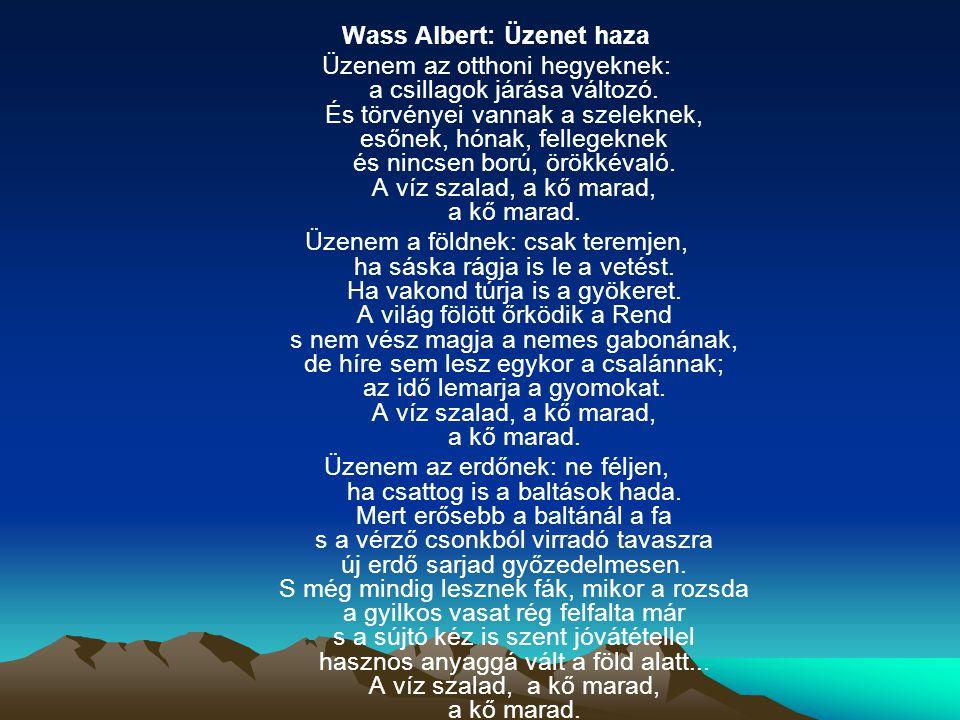 Wass Albert: Üzenet haza