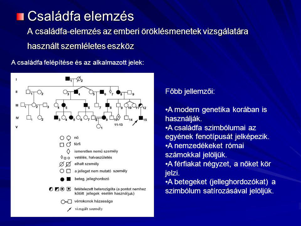 Családfa elemzés A családfa-elemzés az emberi öröklésmenetek vizsgálatára használt szemléletes eszköz.