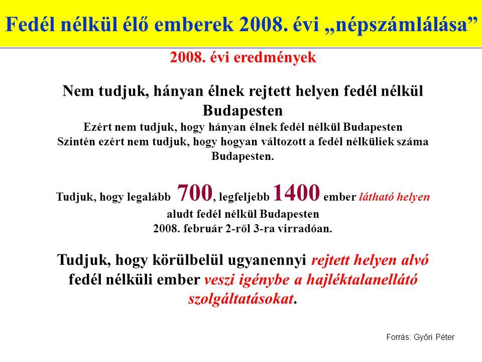 """Fedél nélkül élő emberek 2008. évi """"népszámlálása"""