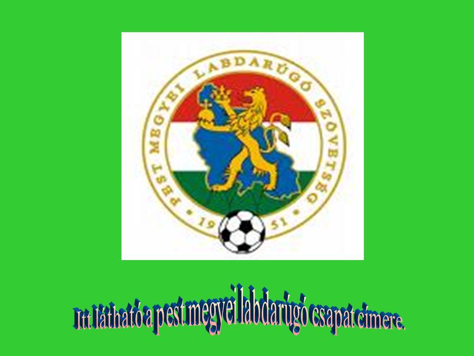 Itt látható a pest megyei labdarúgó csapat címere.