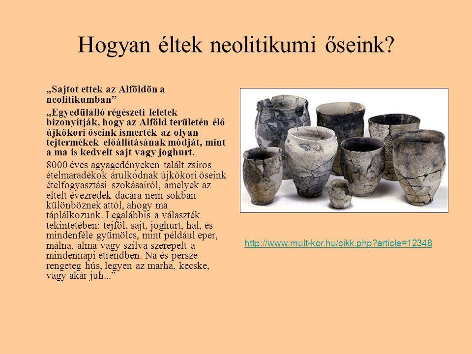 Hogyan éltek neolitikumi őseink