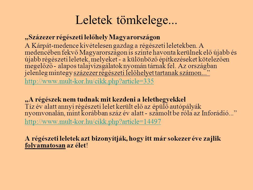 """Leletek tömkelege... """"Százezer régészeti lelőhely Magyarországon"""
