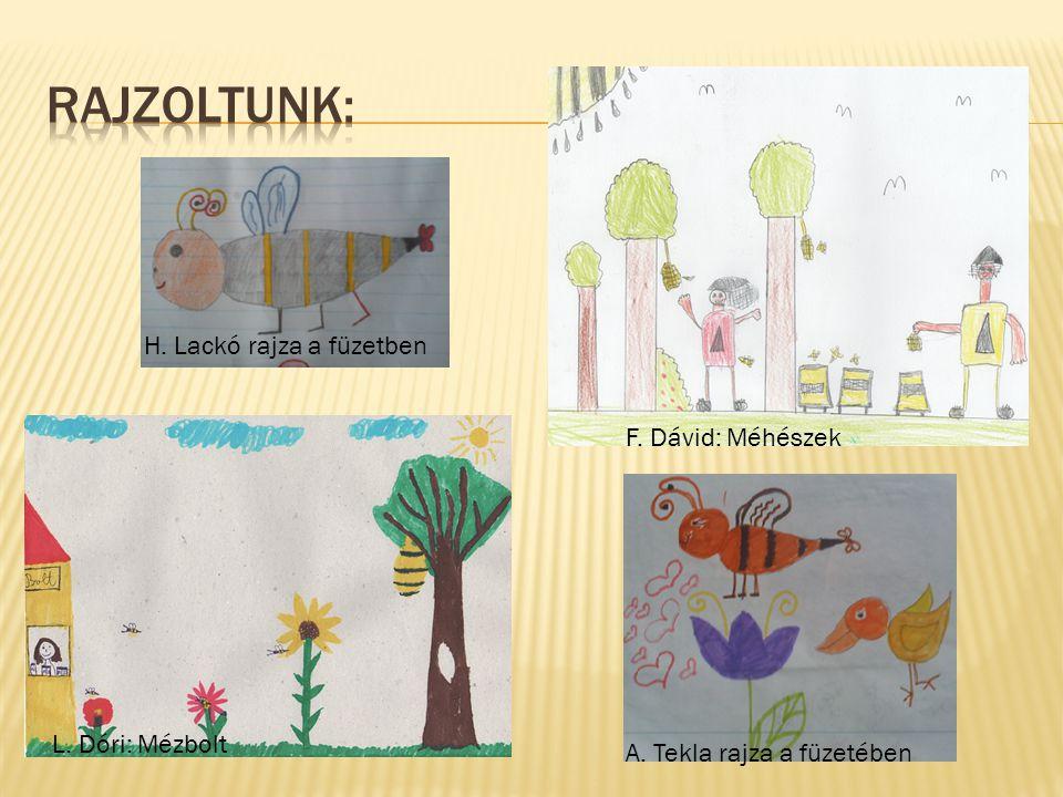 Rajzoltunk: H. Lackó rajza a füzetben F. Dávid: Méhészek