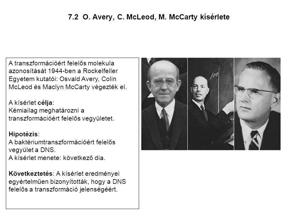 7.2 O. Avery, C. McLeod, M. McCarty kísérlete