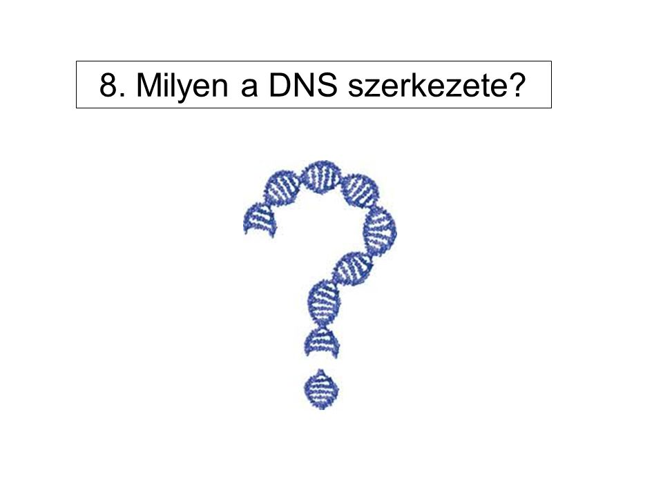 8. Milyen a DNS szerkezete