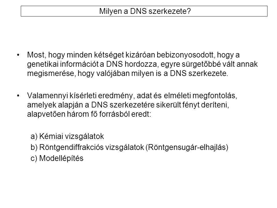 Milyen a DNS szerkezete
