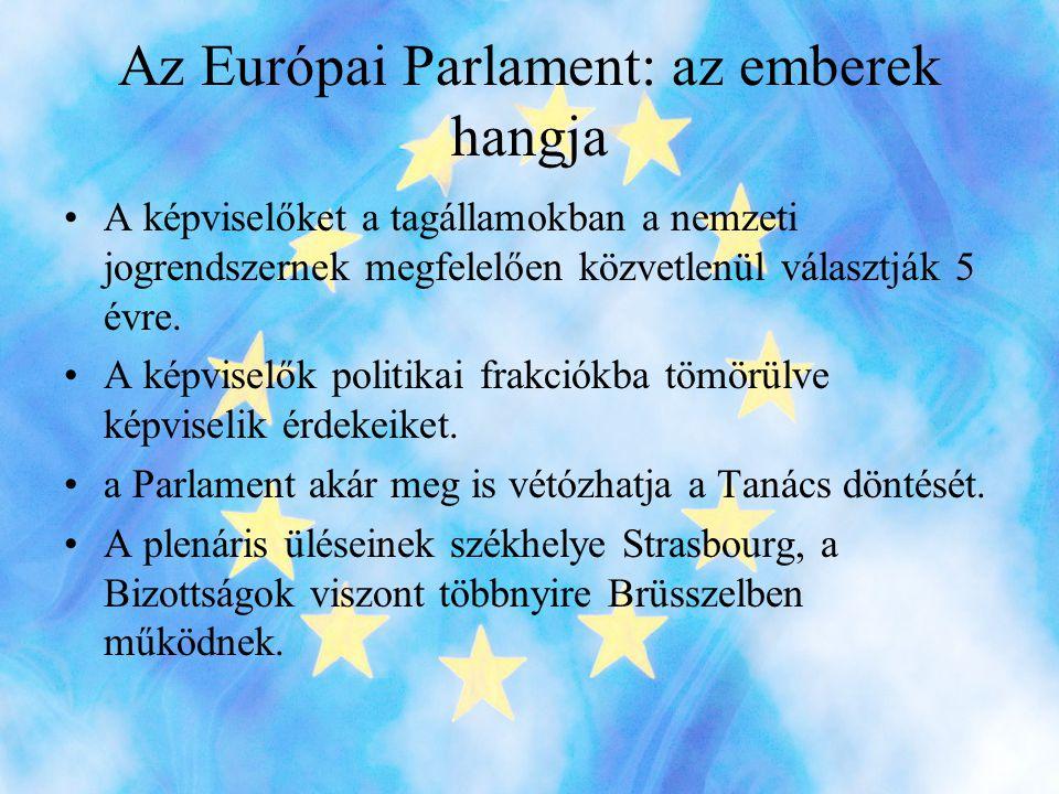 Az Európai Parlament: az emberek hangja