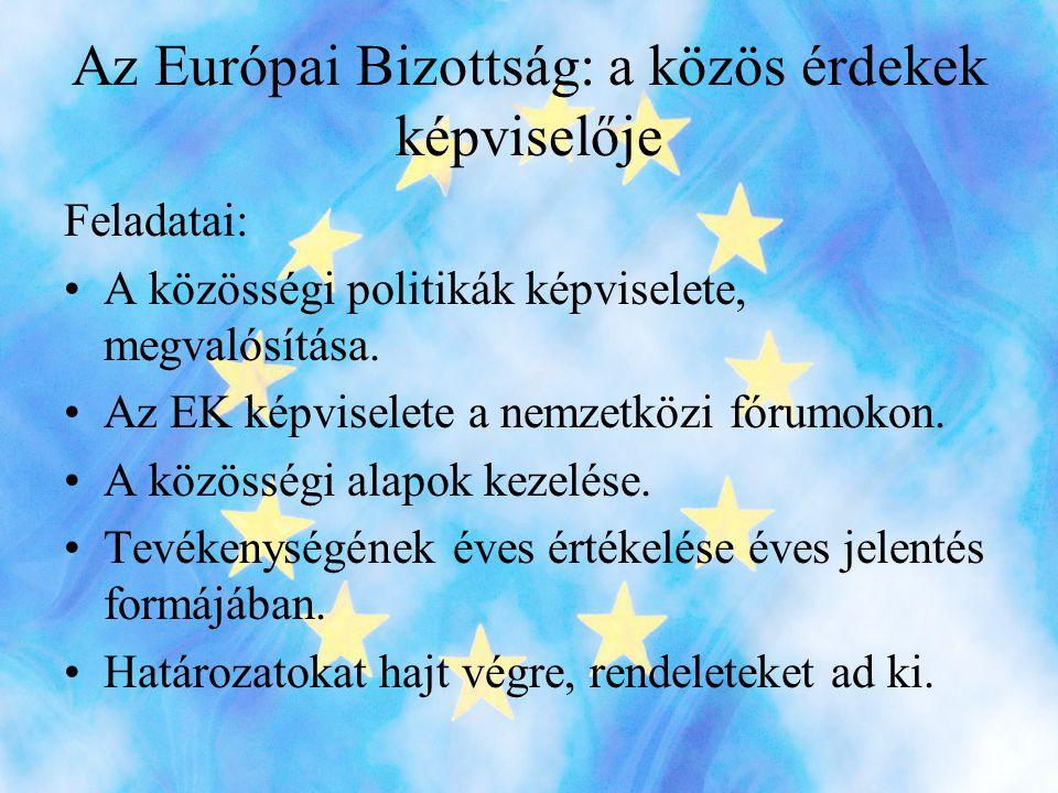 Az Európai Bizottság: a közös érdekek képviselője
